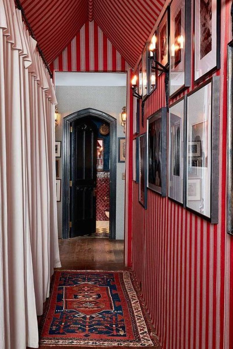 The Snake Zodiac loves hallways, passages, and hidden places. They love red, black, stripes, wooden floors, and rugs.