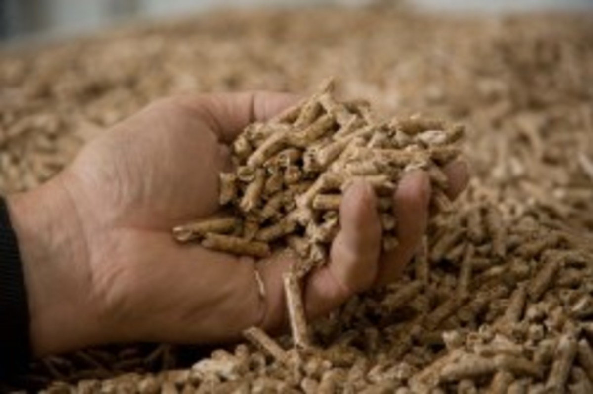 Wood pellets for clean renewable fuel