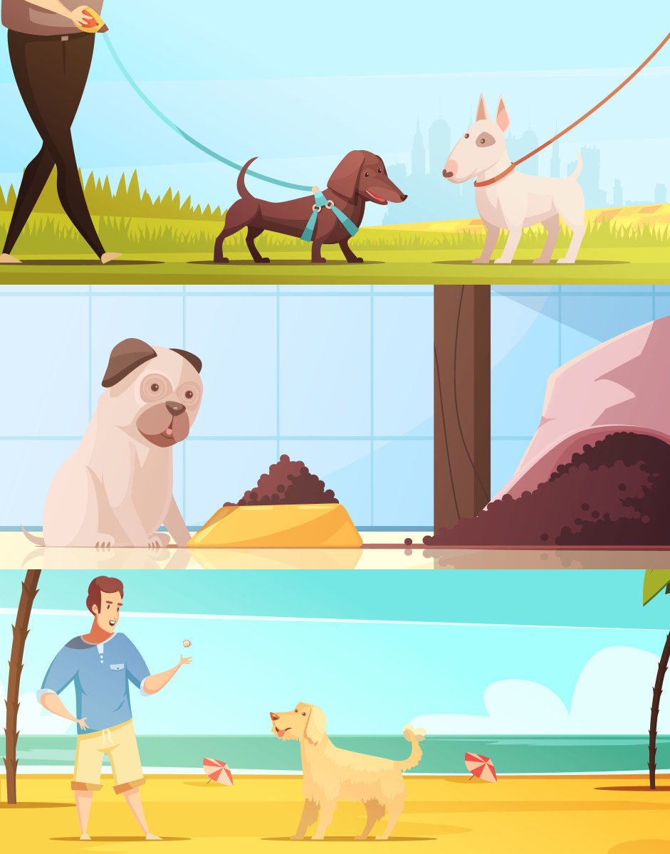 bad-effects-of-not-walking-your-dog-daily