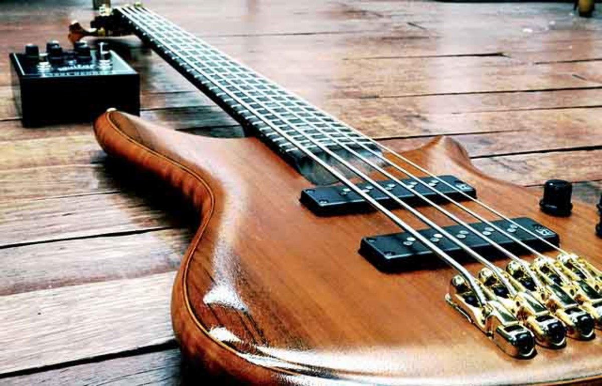 Electrical guitars are popular stringed instruments.