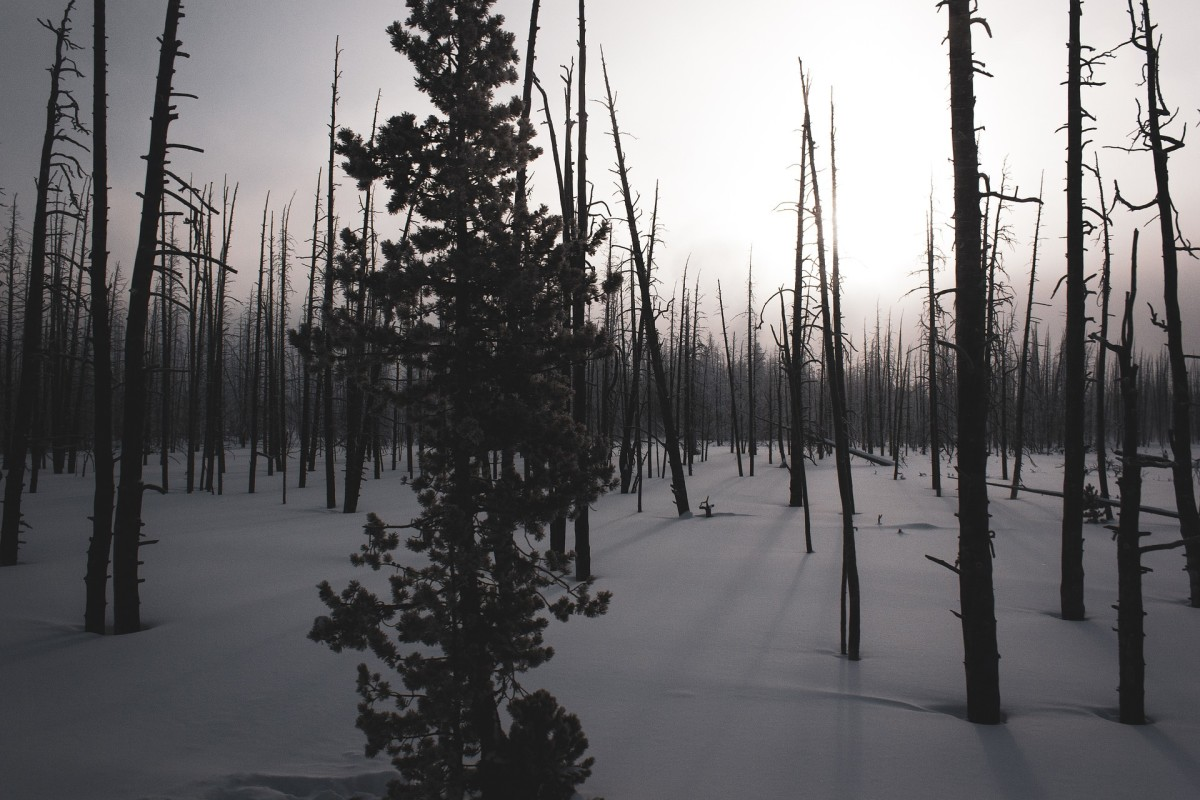 An area covered with snow and darkness and the photo represents a sort of doomsday situation. Cold and darkness is associated with doom and gloom.