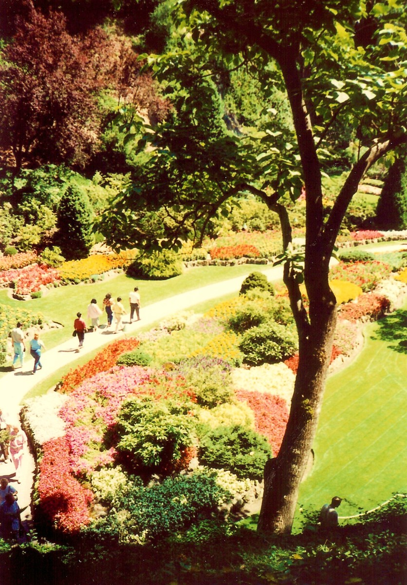 Famous Butchart Gardens in Victoria, BC, Canada - Spectacular Daytime and at Night