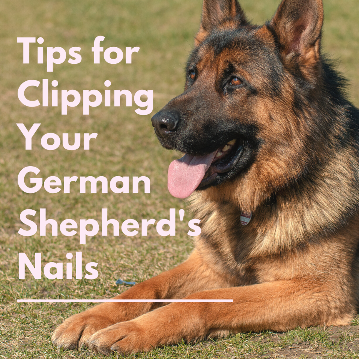 Good nail care is important!