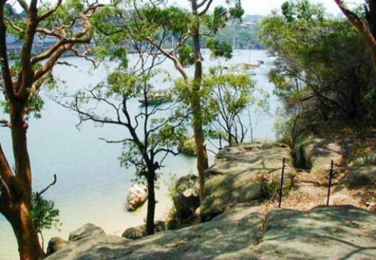 Berry Island walking track