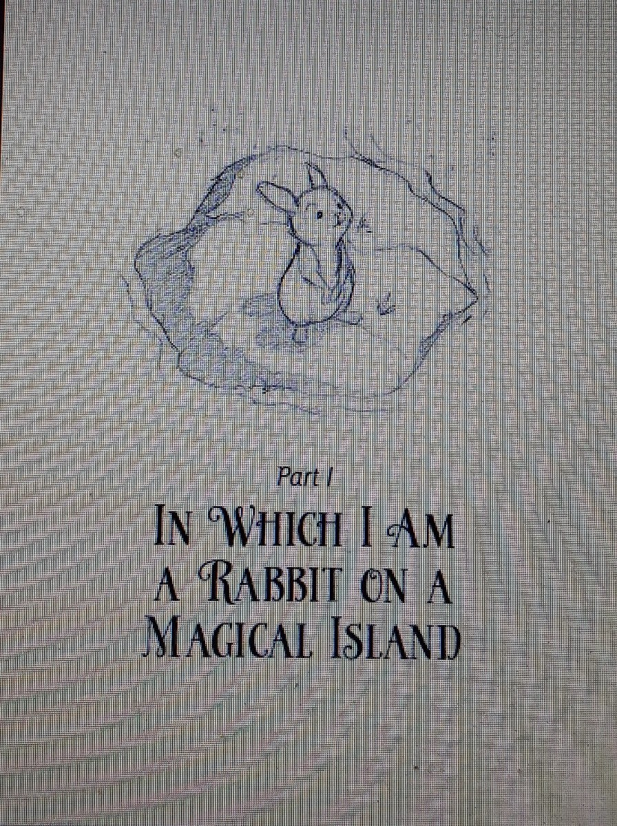 rabbits-a-magician-and-lessons-in-bravery-and-family-in-creative-tale-for-middle-grade-readers