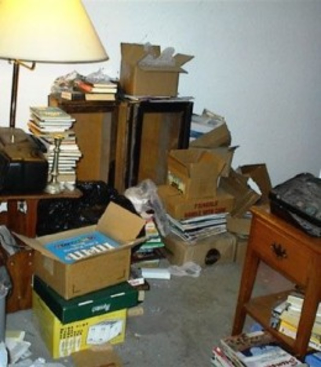 To the right of the lamp against the wall, you see what is left of our lawyer style bookcase with the glass doors. It had four shelves, but only two were left. This toppled towards the front door and was part of what was holding the fallen hat rack i