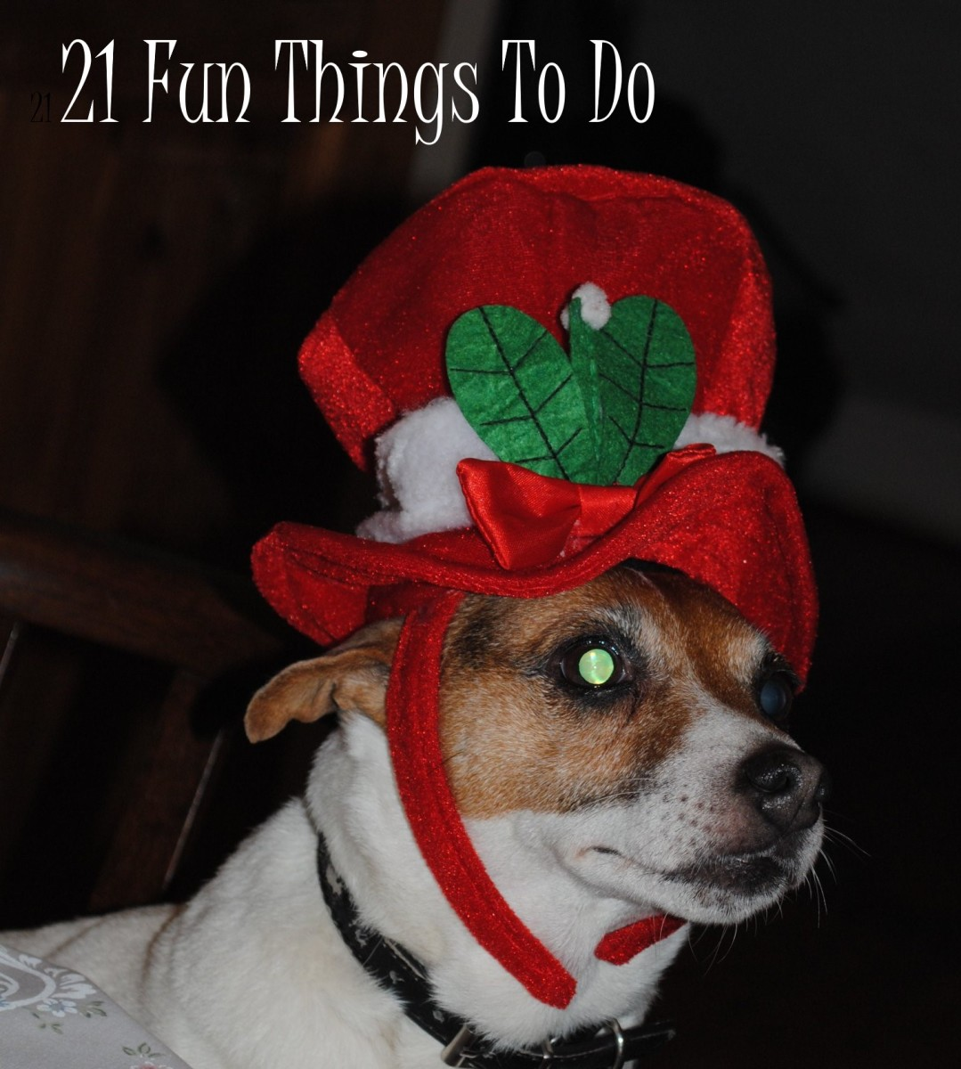 21 Fun Things To Do on a Budget