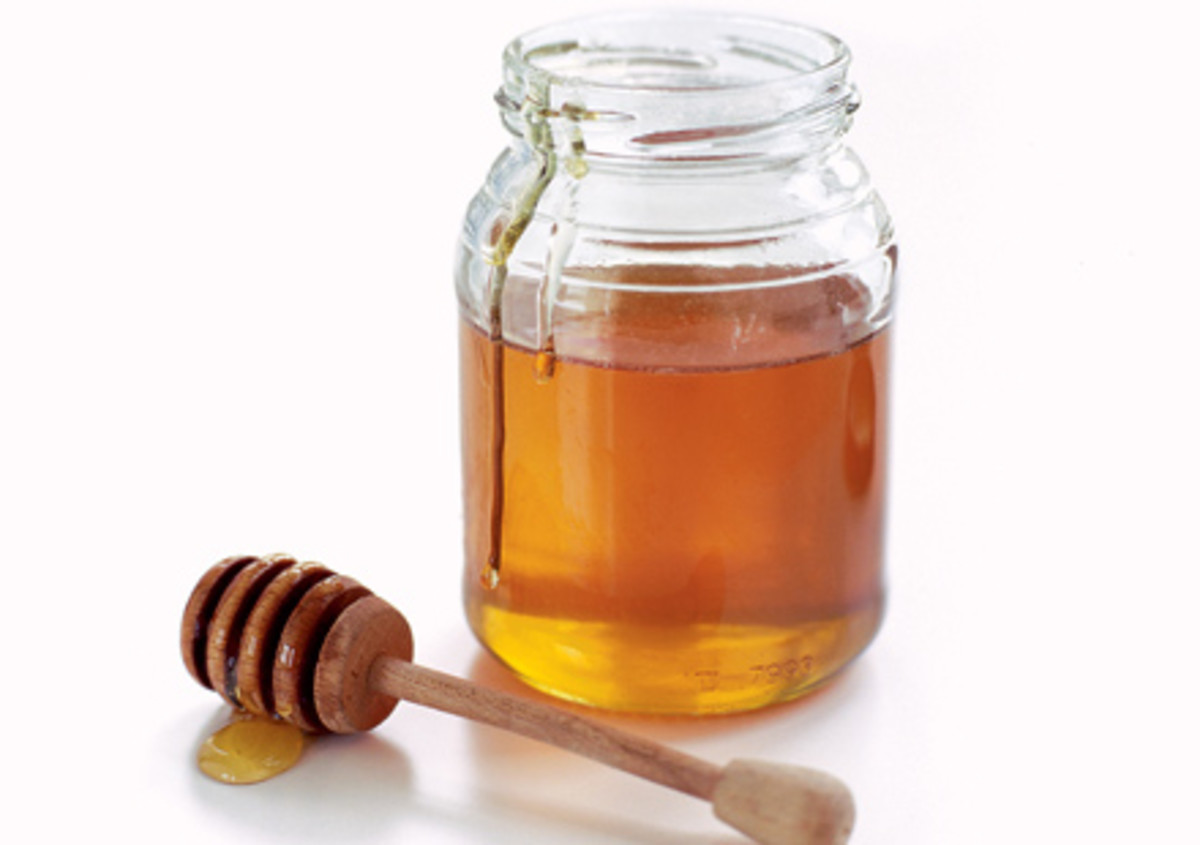 Different Kinds Of Honey