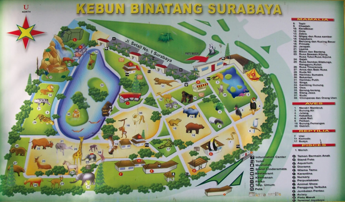 surabaya-zoo