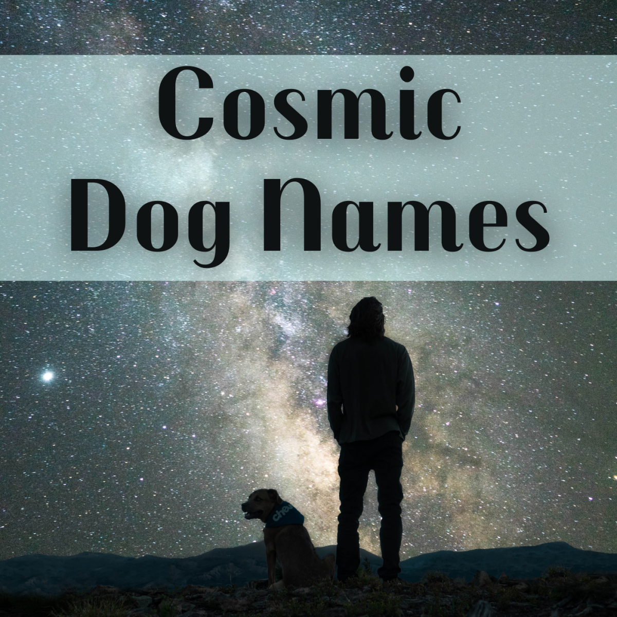 Take inspiration from the stars when naming your dog. Discover name ideas such as Atlas, Vega, Galaxy, Titan, and (of course) Pluto.