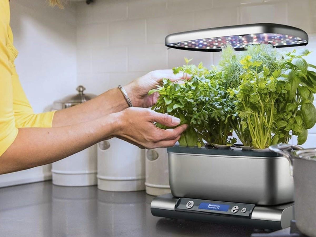 Aero Garden Harvest Kit