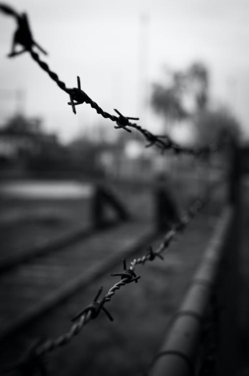 Barb wire may look serene and peaceful, but beware. You could get cut.