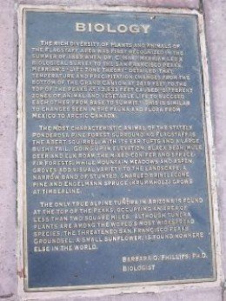 A Heritage Square Plaque