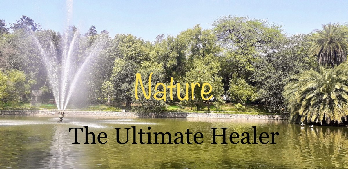 Nature— The Ultimate Healer