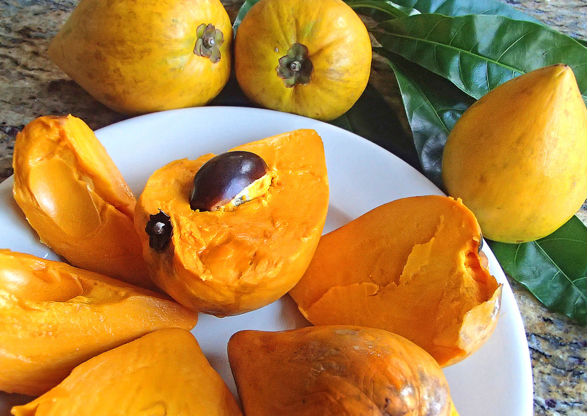 Whether it tastes like baked sweet potato or pumpkin puree, fresh eggfruit is a delightful treat.