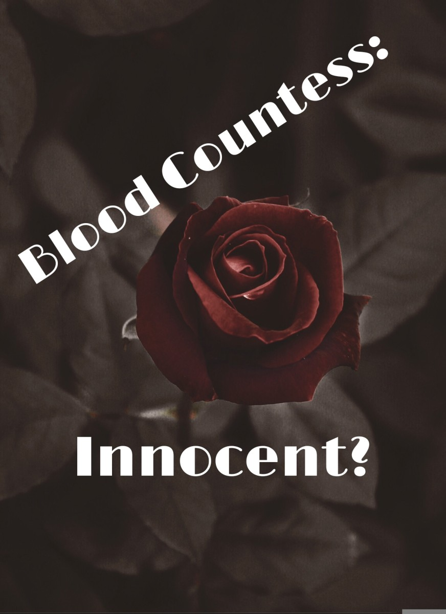 Elizabeth Bathory: Not Guilty?