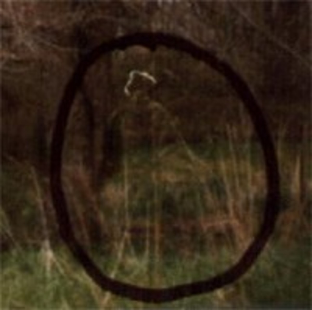 Ghost Photo In The Circle