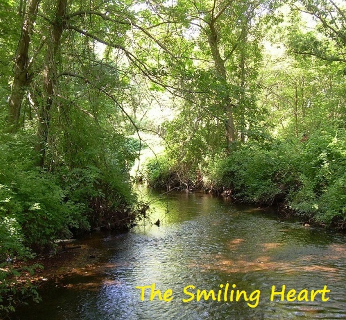 the-smiling-heart