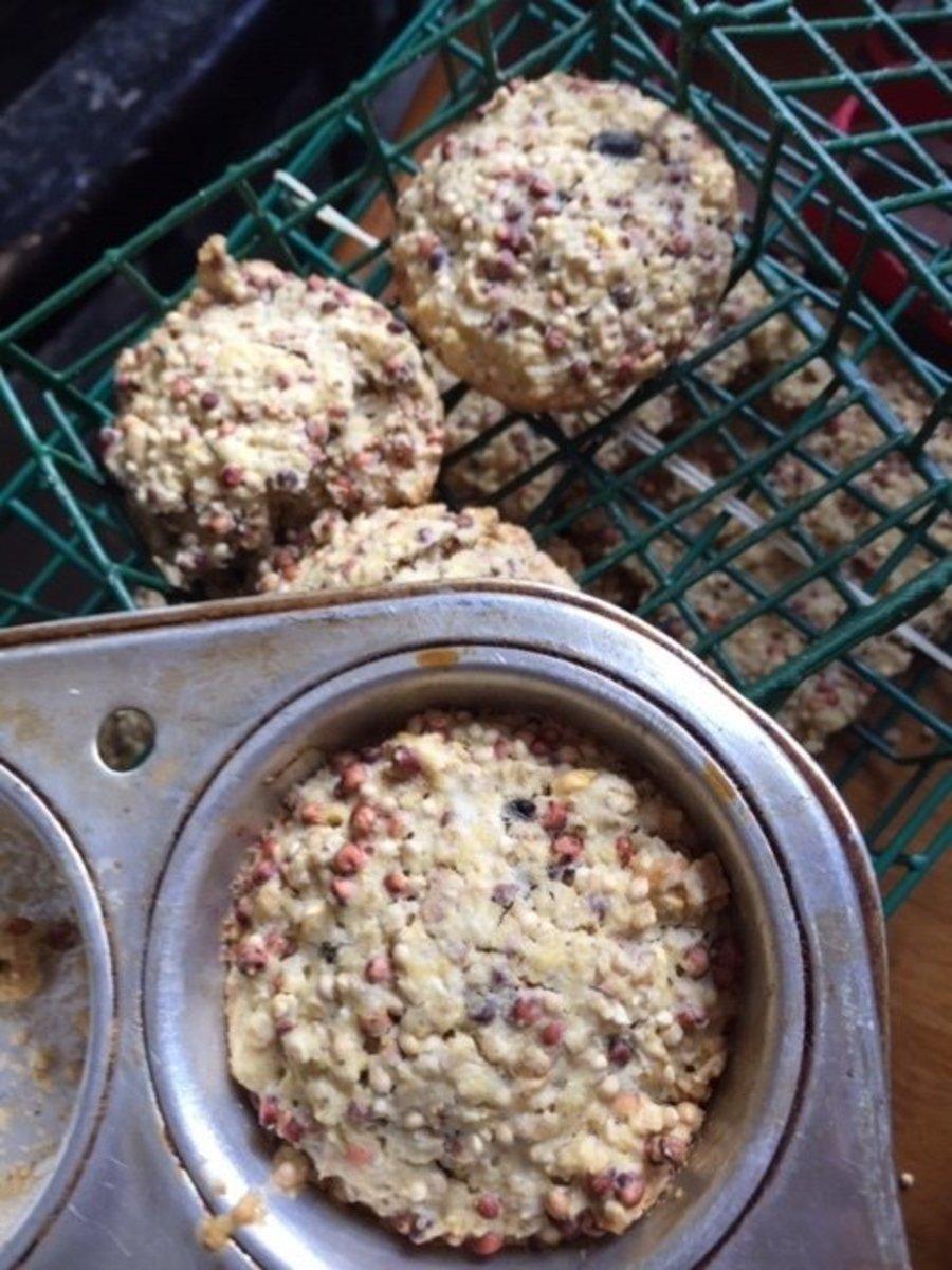 Cornmeal Seed Cakes
