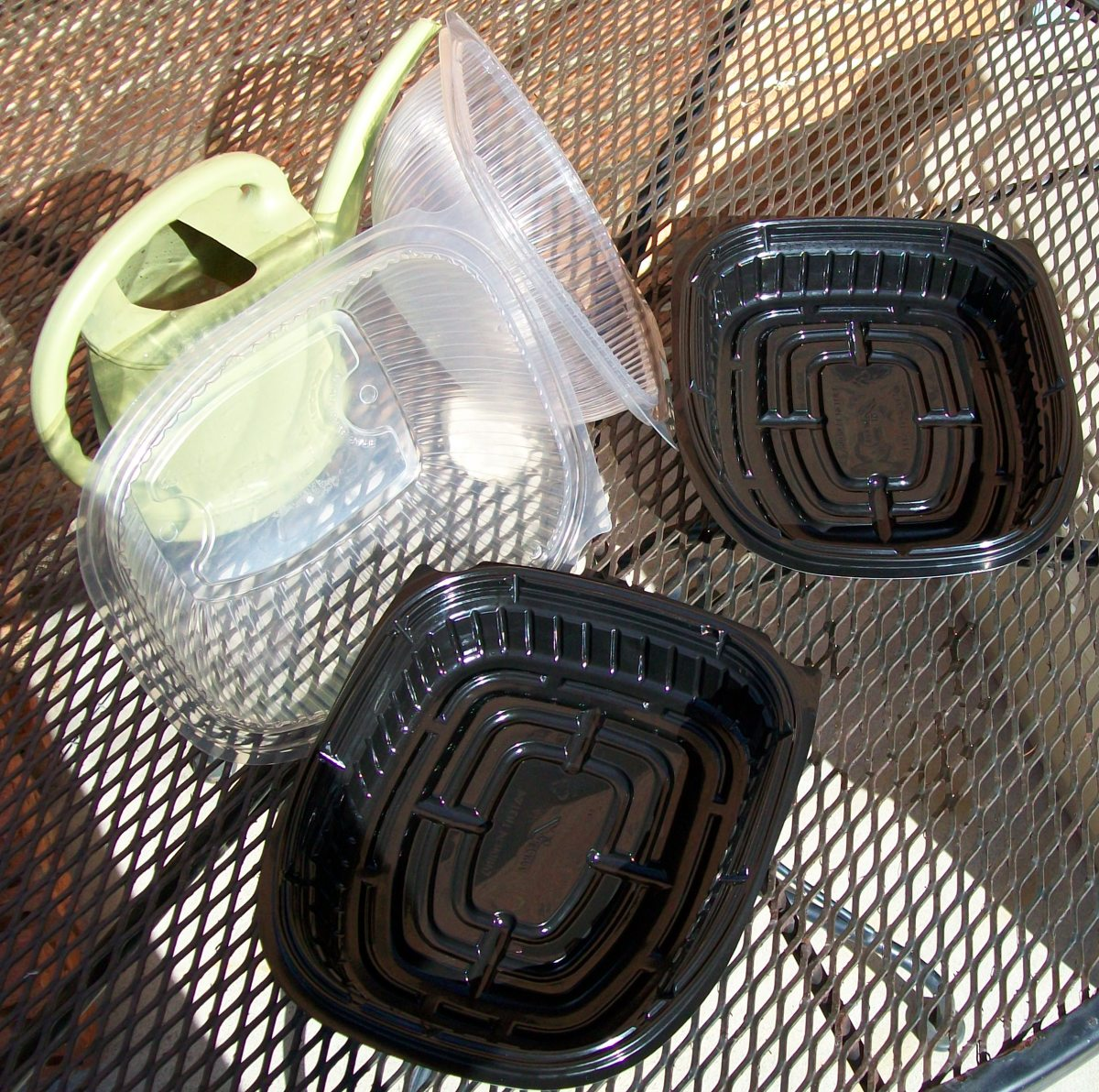 Rotisserie chicken containers make great greenhouses for starting seeds.