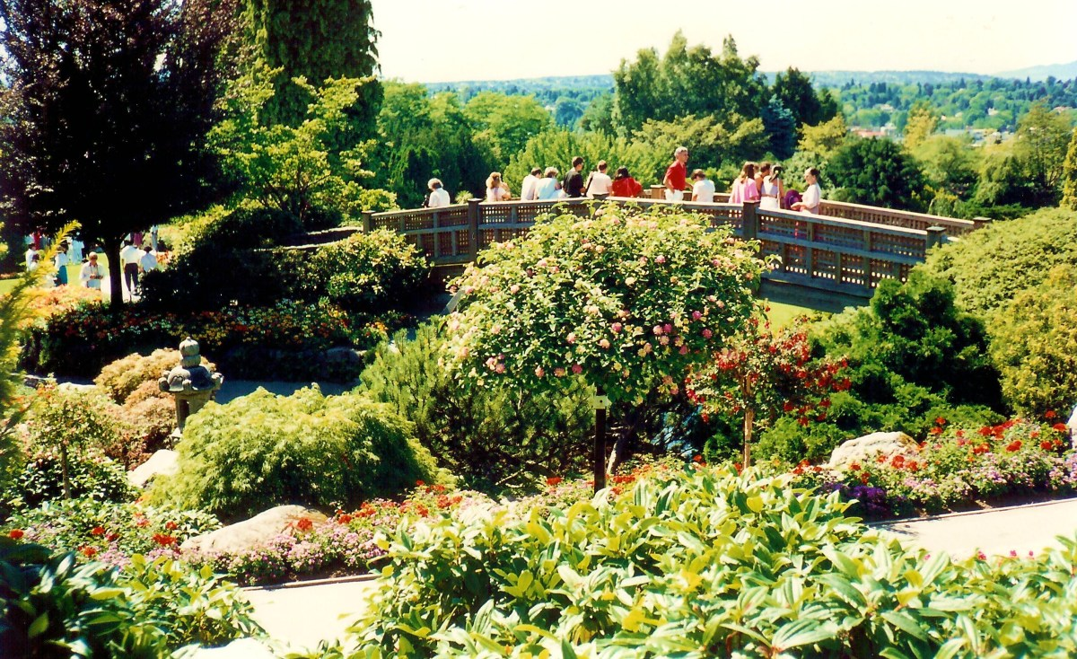 Queen Elizabeth Park & Bloedel Conservatory in Vancouver, Canada  - Fabulous Photo Wedding Site