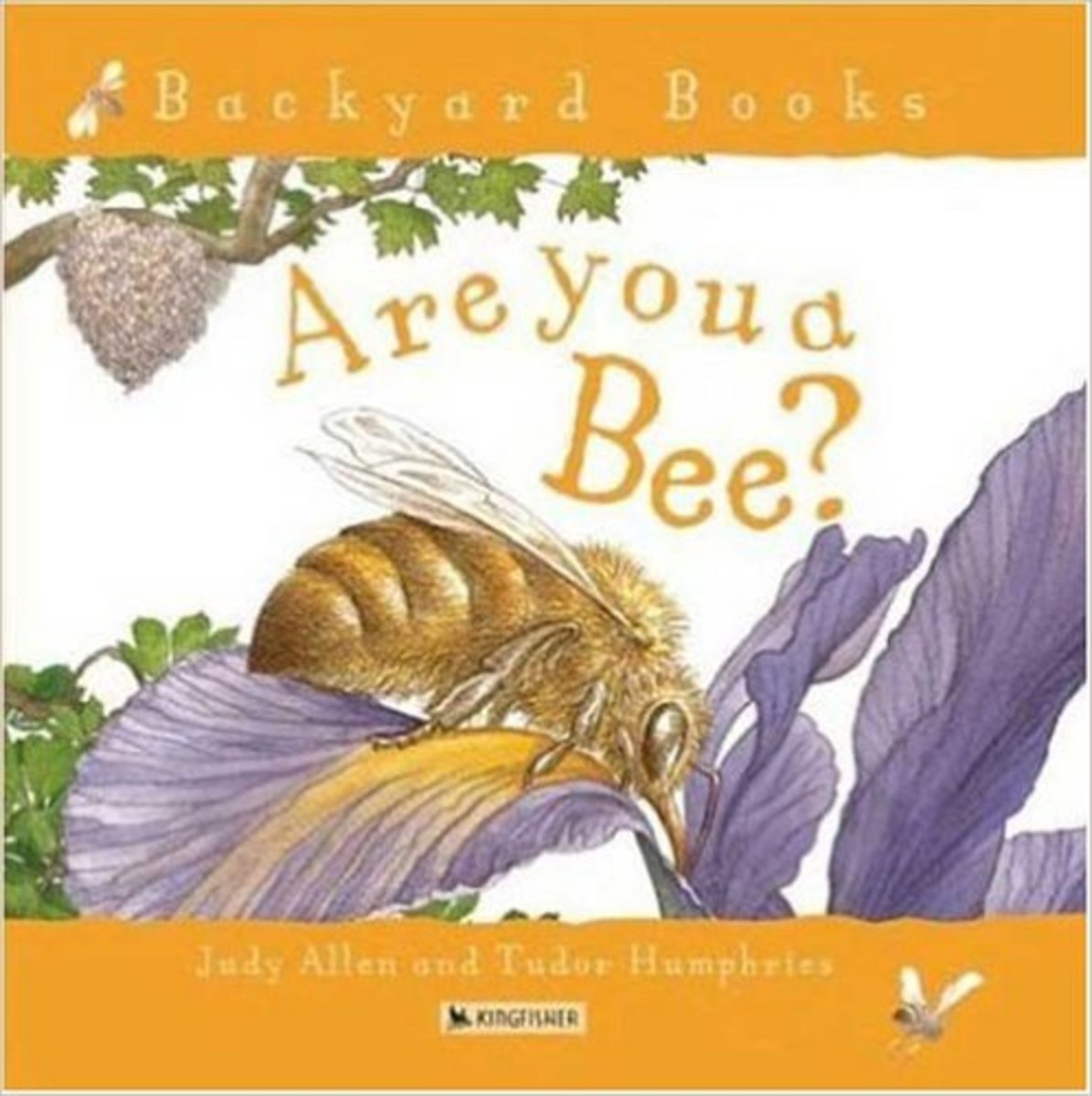Are You a Bee? (Backyard Books) by Judy Allen