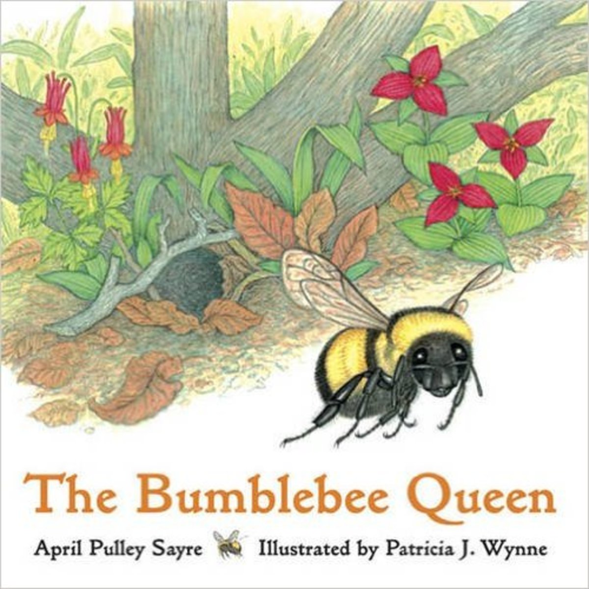 The Bumblebee Queen by April Pulley Sayre - All images are from amazon.com.