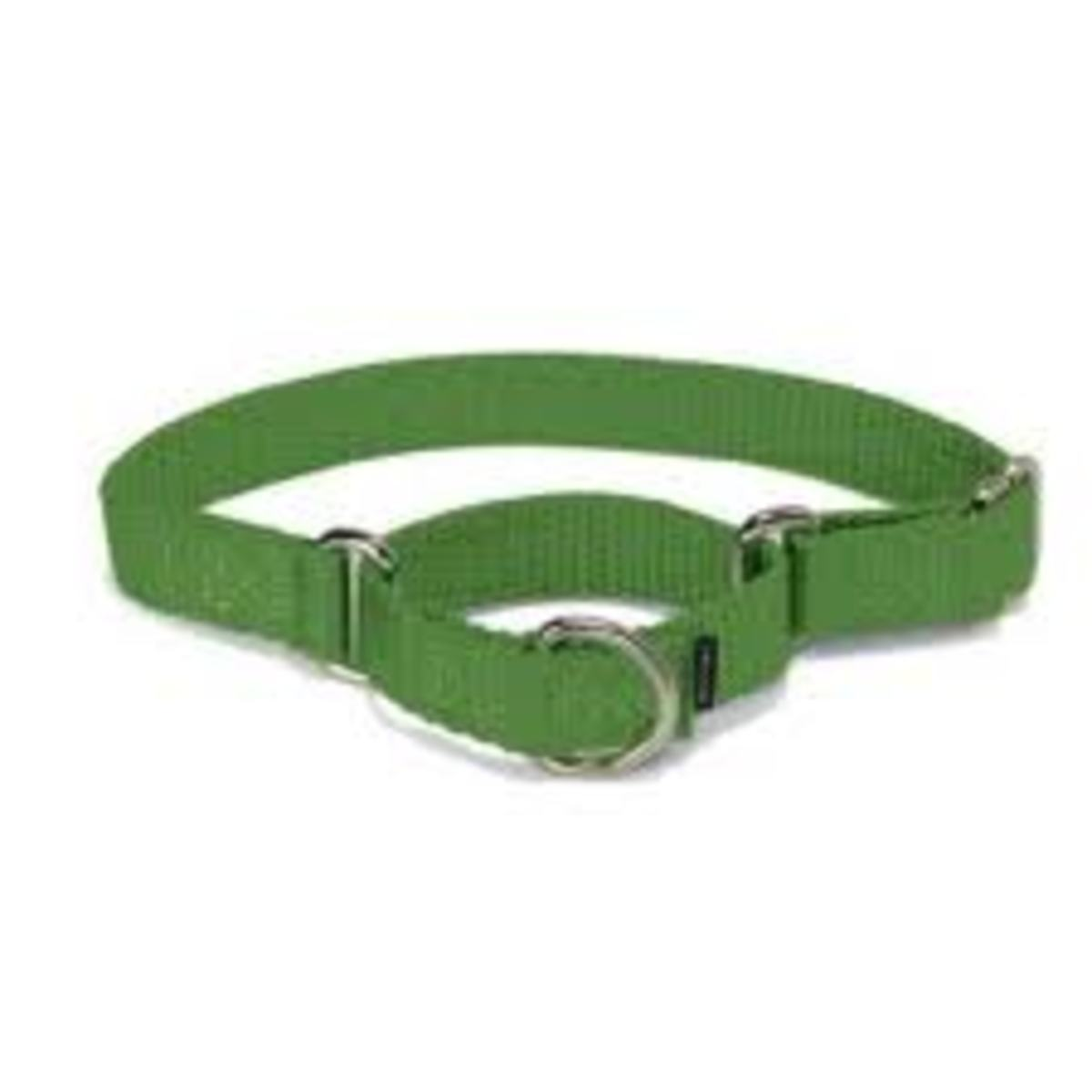 Martingale collars, popular at first with sight hounds, now crossing the board for use in all sorts of breeds. Trainers find them to be a softer way of correction compared to choke collars.