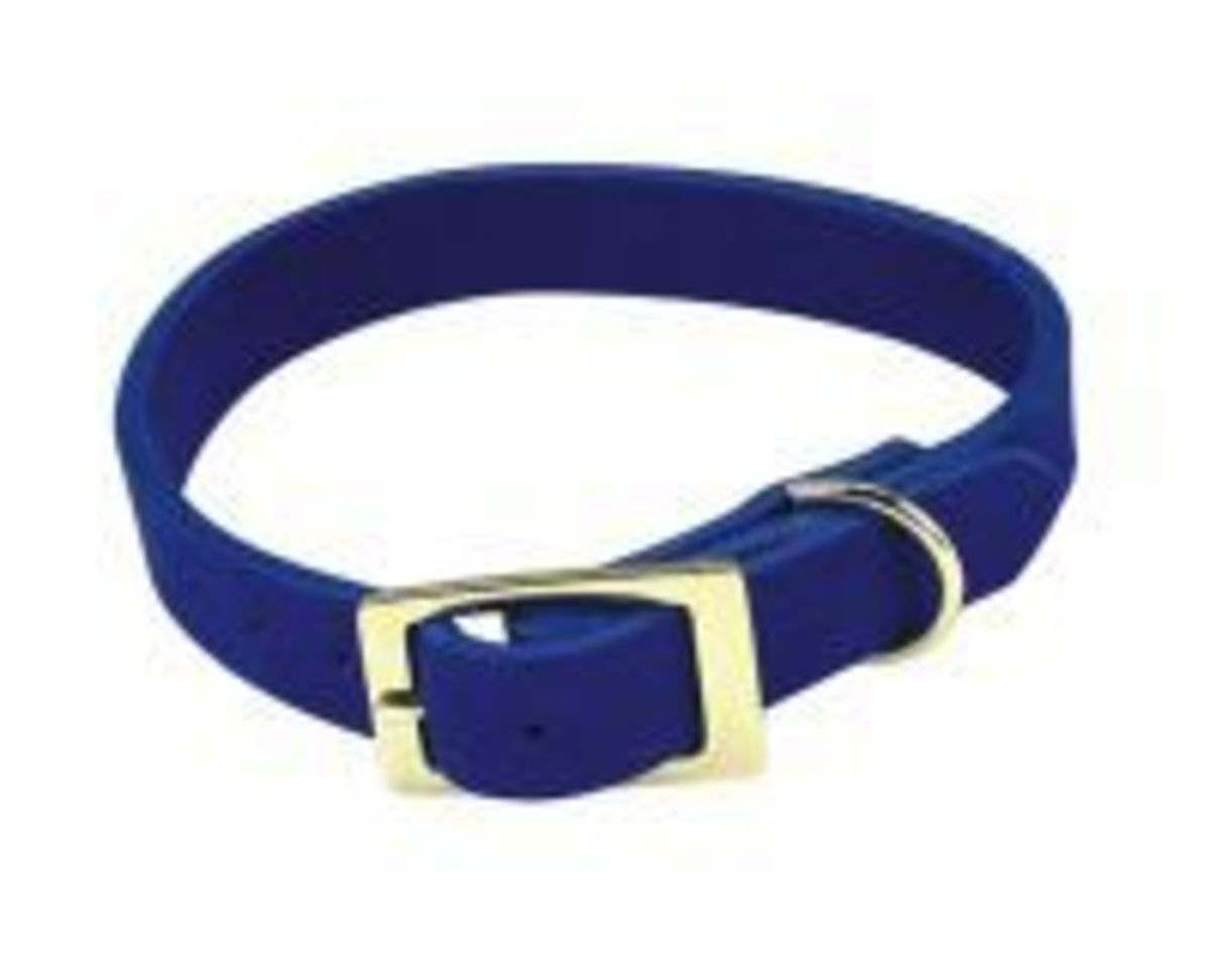 Dog Collars: The Good, the Bad, and the Ugly