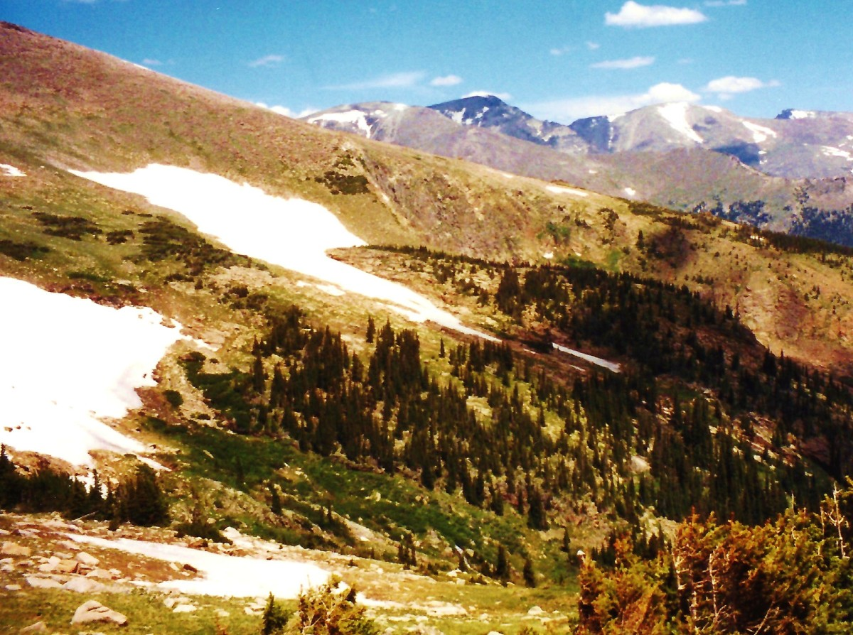 Scenery from Trail Ridge Road