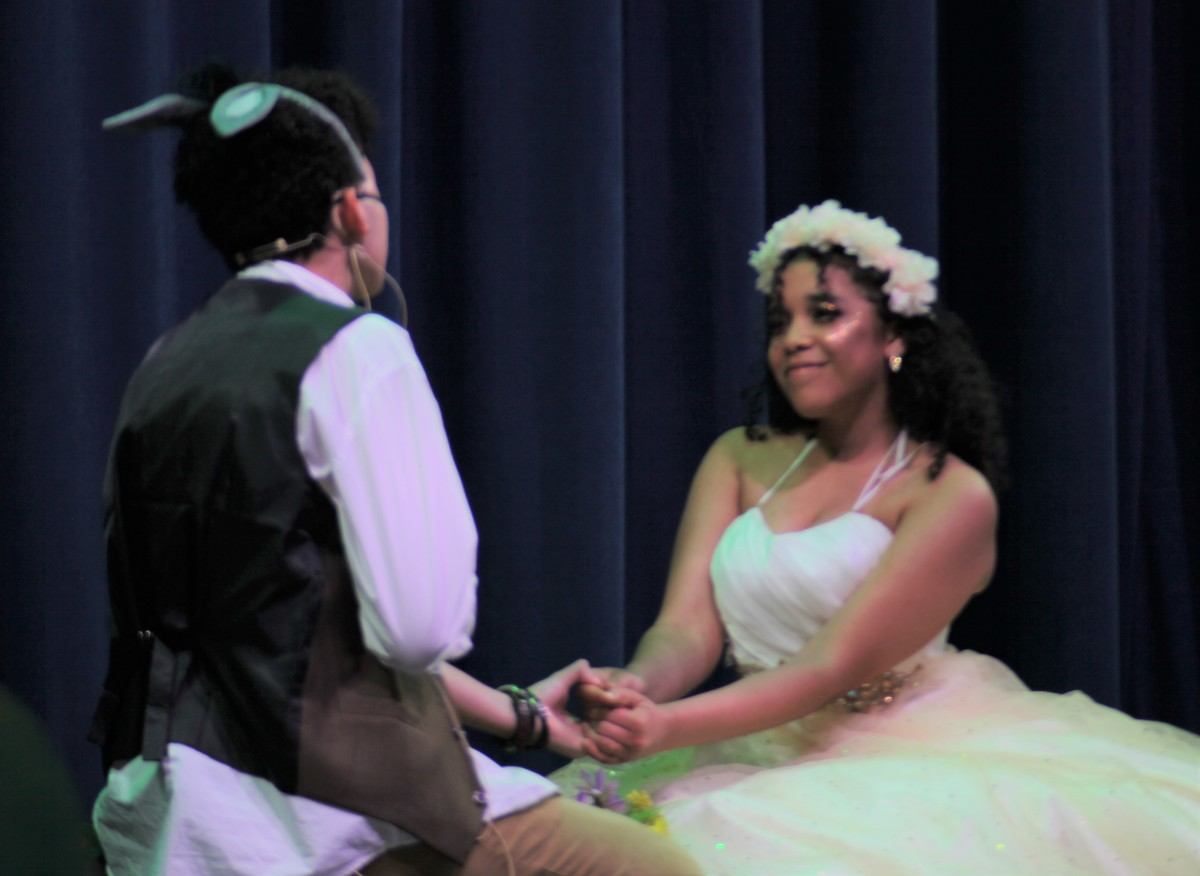 Theater production of Midsummer's Night Dream All images copyright of Franklin Academy