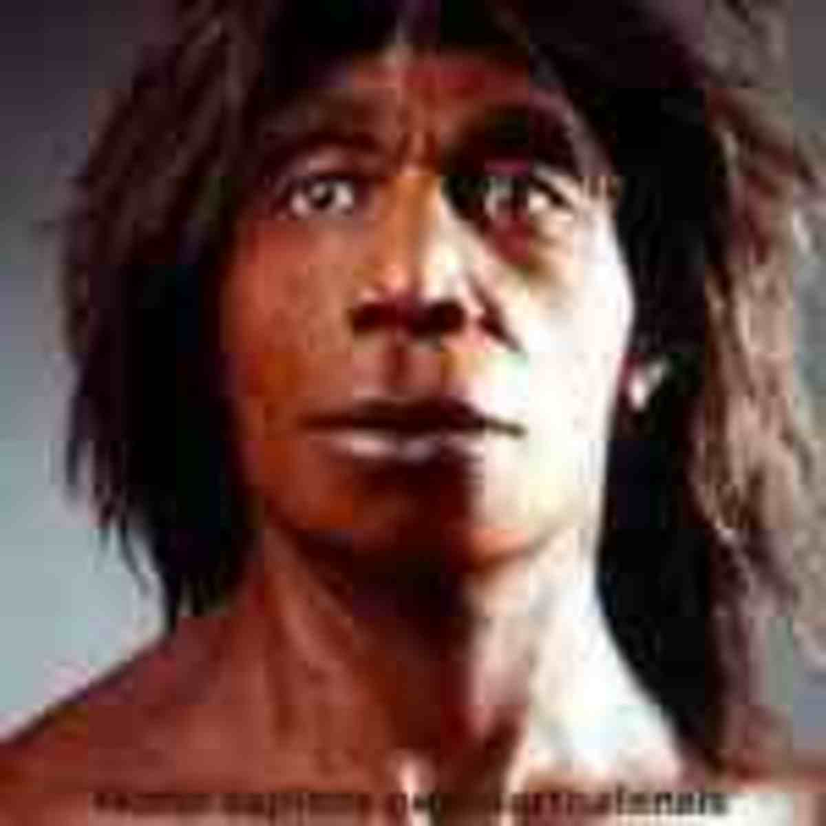 Denisovans - A new breed of Man who Interbred with Humans An Exciting New Discovery for Archaeology