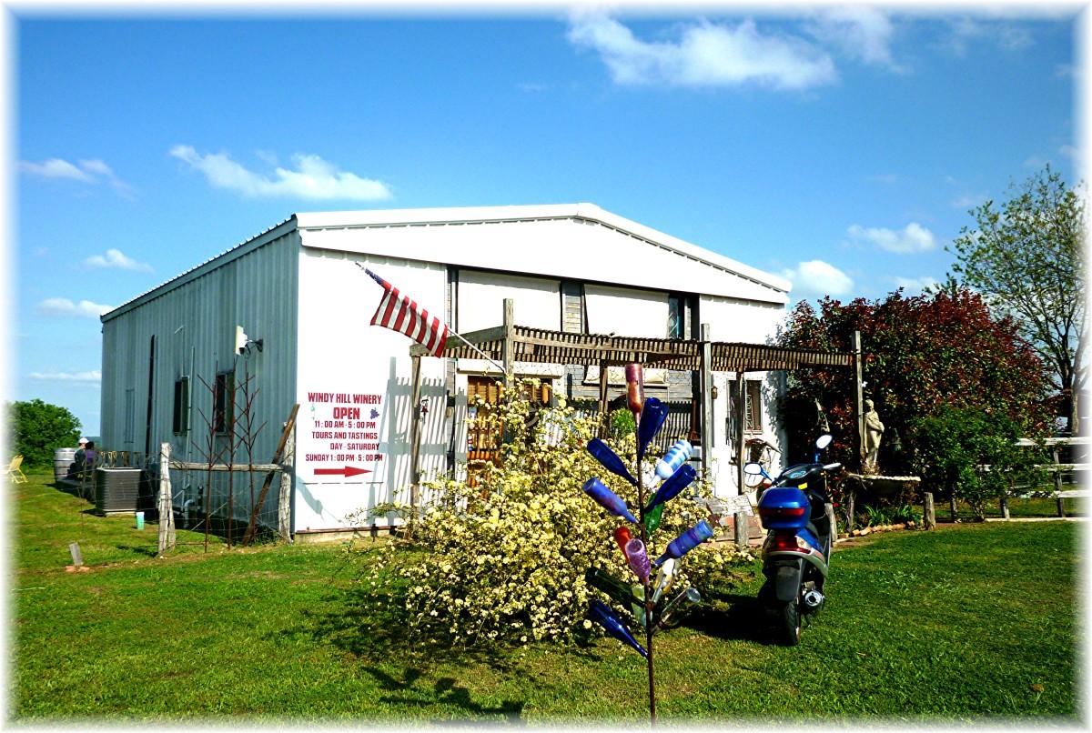 Windy Winery Pics in Brenham, Texas on the Texas Bluebonnet Wine Trail