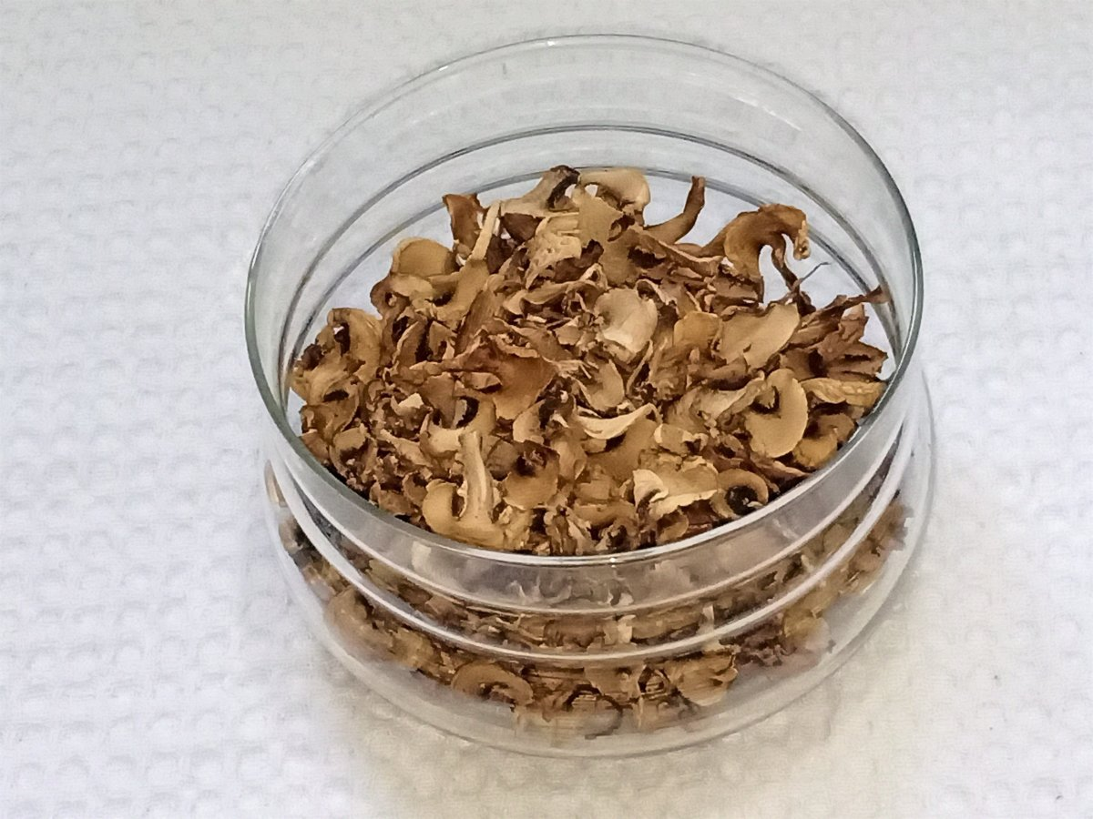 How to Sun-Dry Mushrooms and Store Them for a Long Time