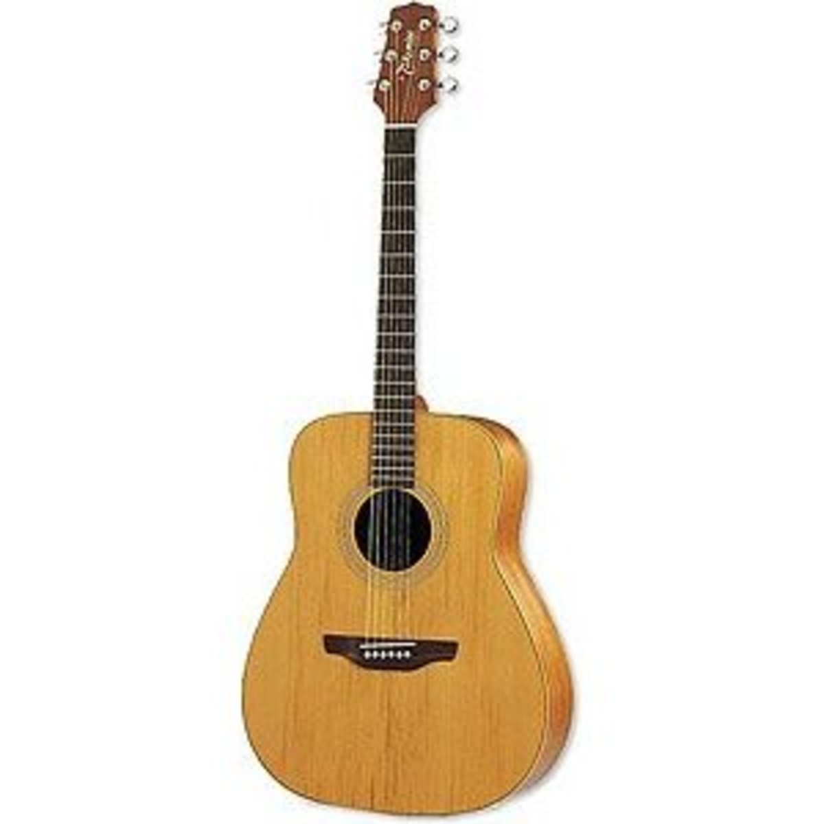 Dreadnoughts are the standard acoustic guitar body shape.