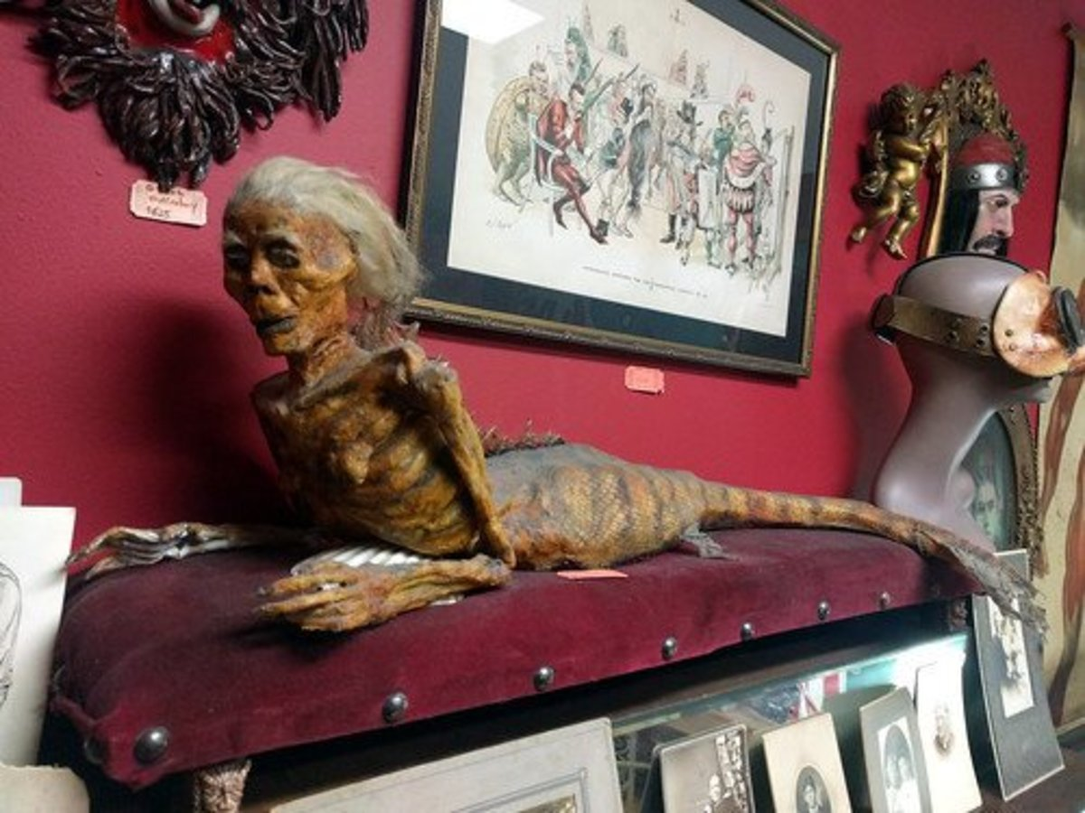 A Feejee Mermaid on display in California.