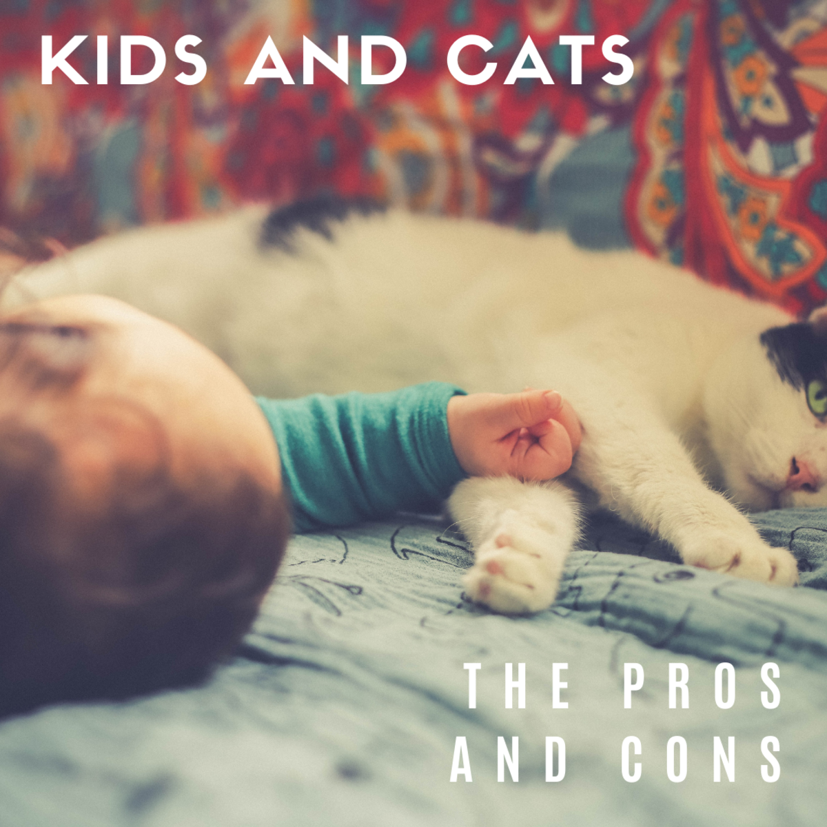 Learn the pros of cons of introducing a cat to your baby (or vice versa).