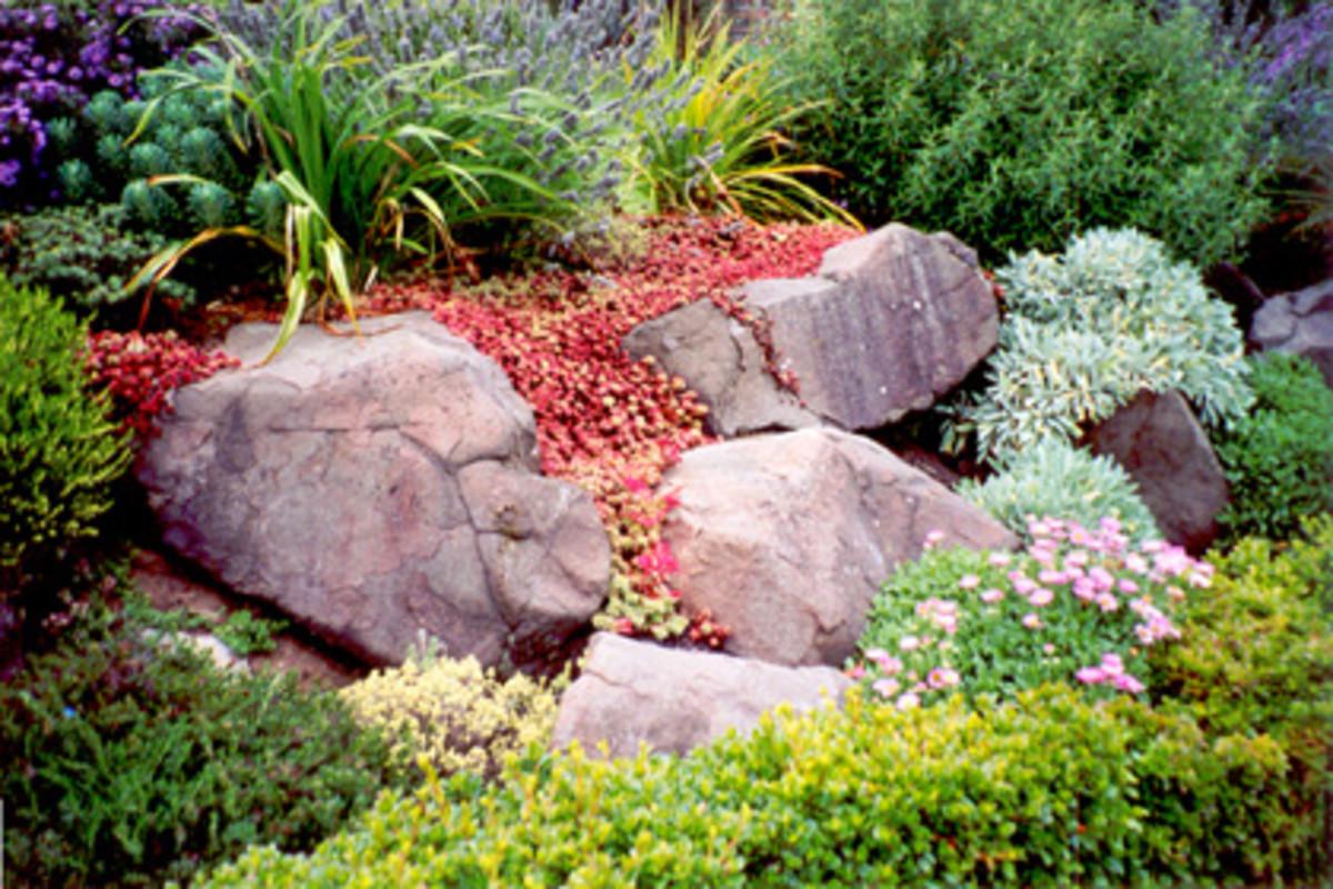 how-to-build-a-rock-garden