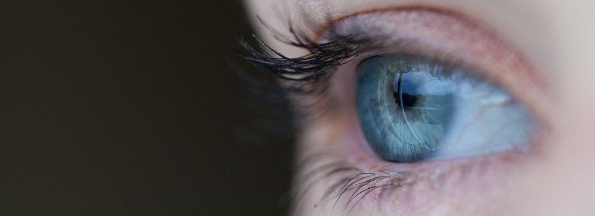 tthe-human-eye