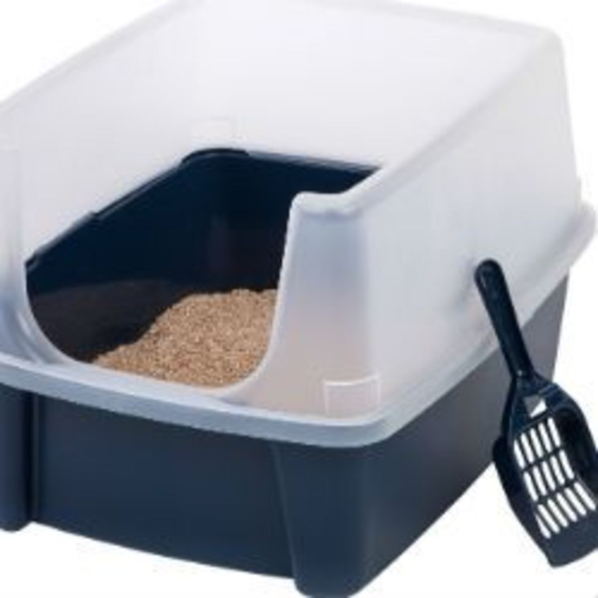 Best Litter Box For Odor Control & Smells