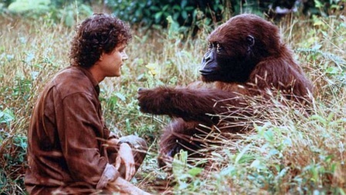 The film is hamstrung by a weak cast, a goofy narrative, poor special effects and unconvincing gorilla makeup. We are in solid B-movie territory here.