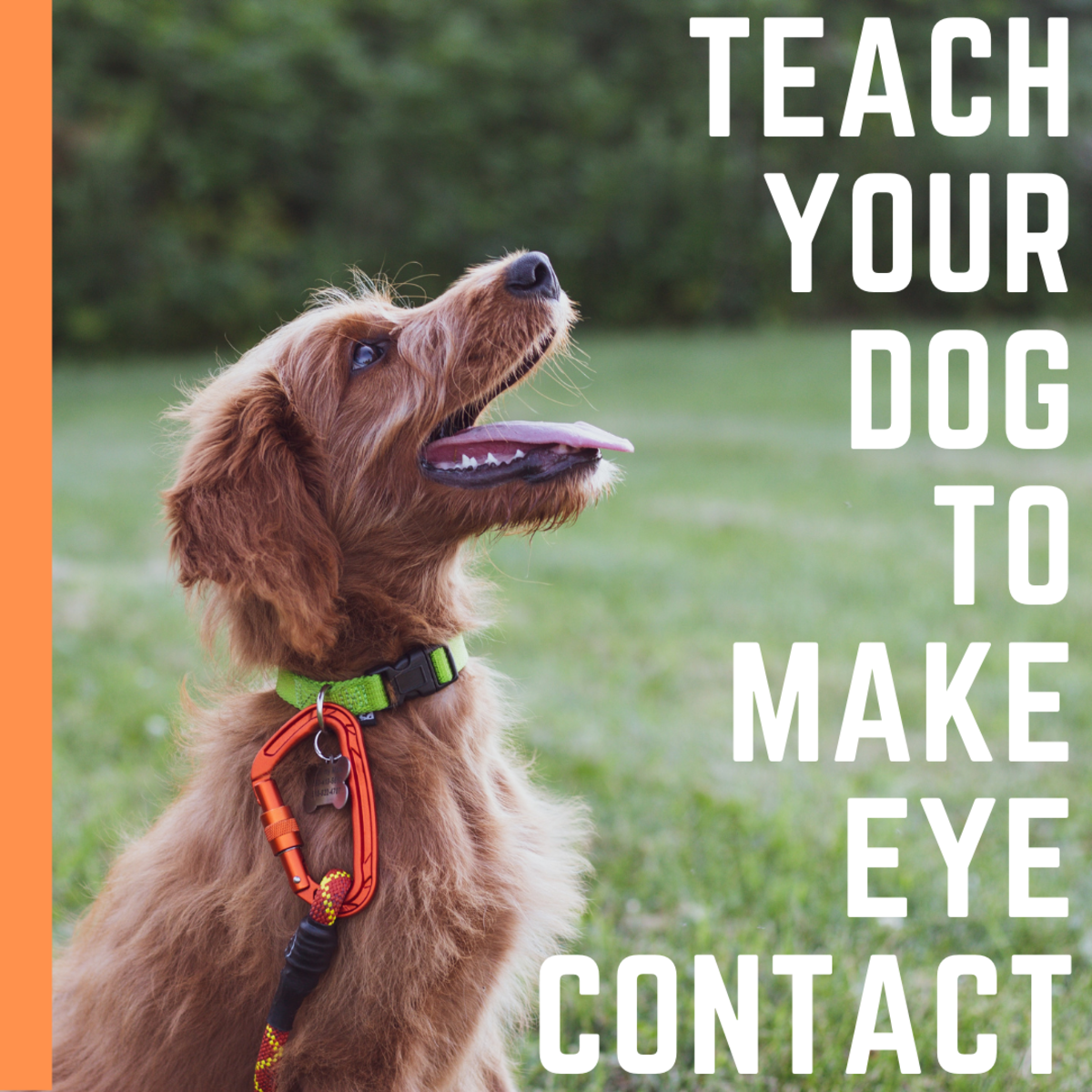 Eye contact will help you communicate with your friend.
