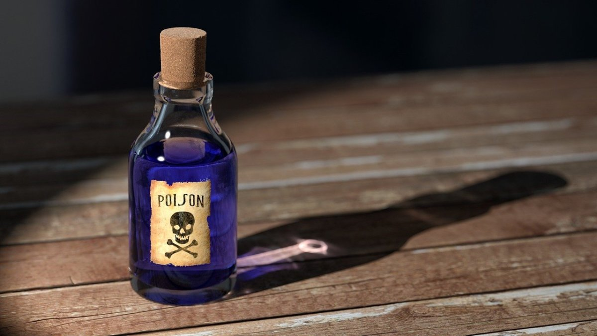 Items in your home may have poisonous substances in them.