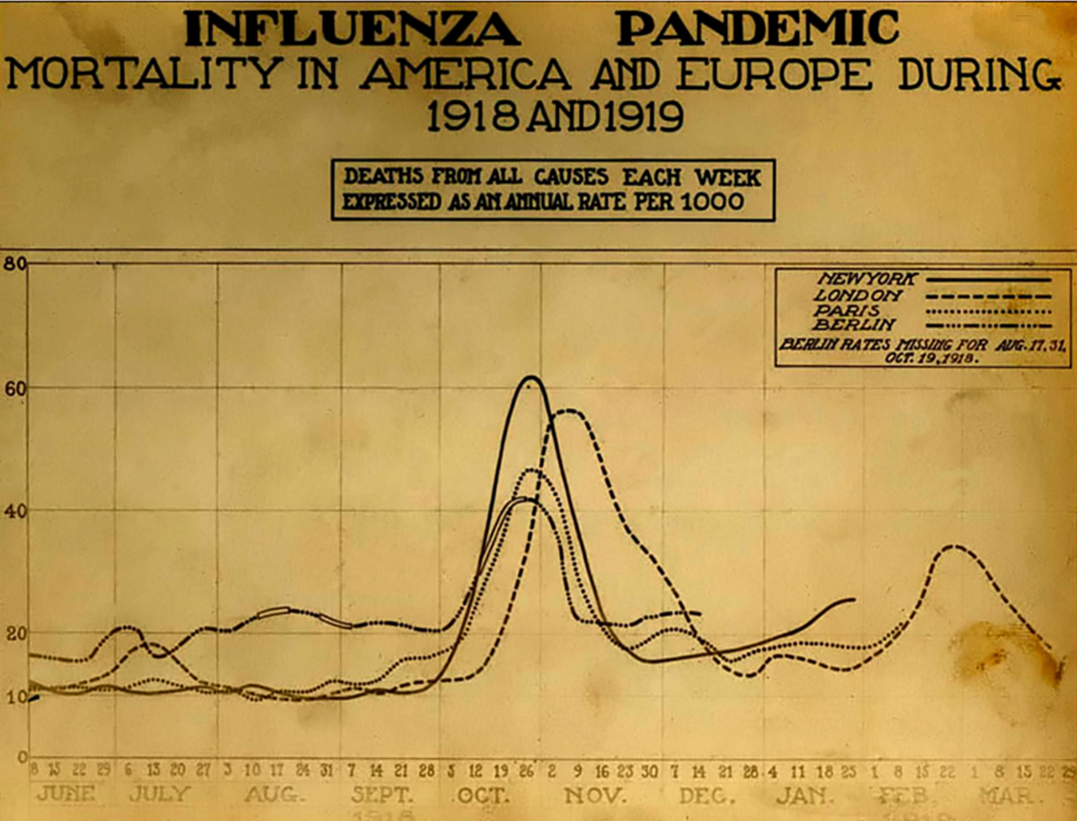Mortality chart for America and Europe during the 1918-1919 influenza pandemic.