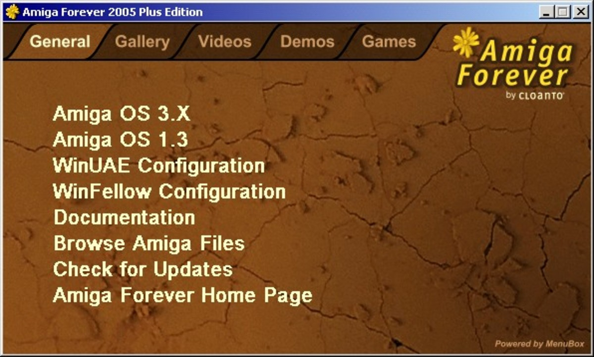 Amiga Forever Launcher.  From here you can start the Amiga OS on you PC.