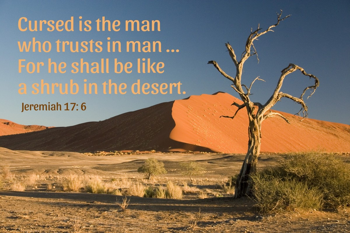 The man who trusts in man shall be like a shrub in the desert.