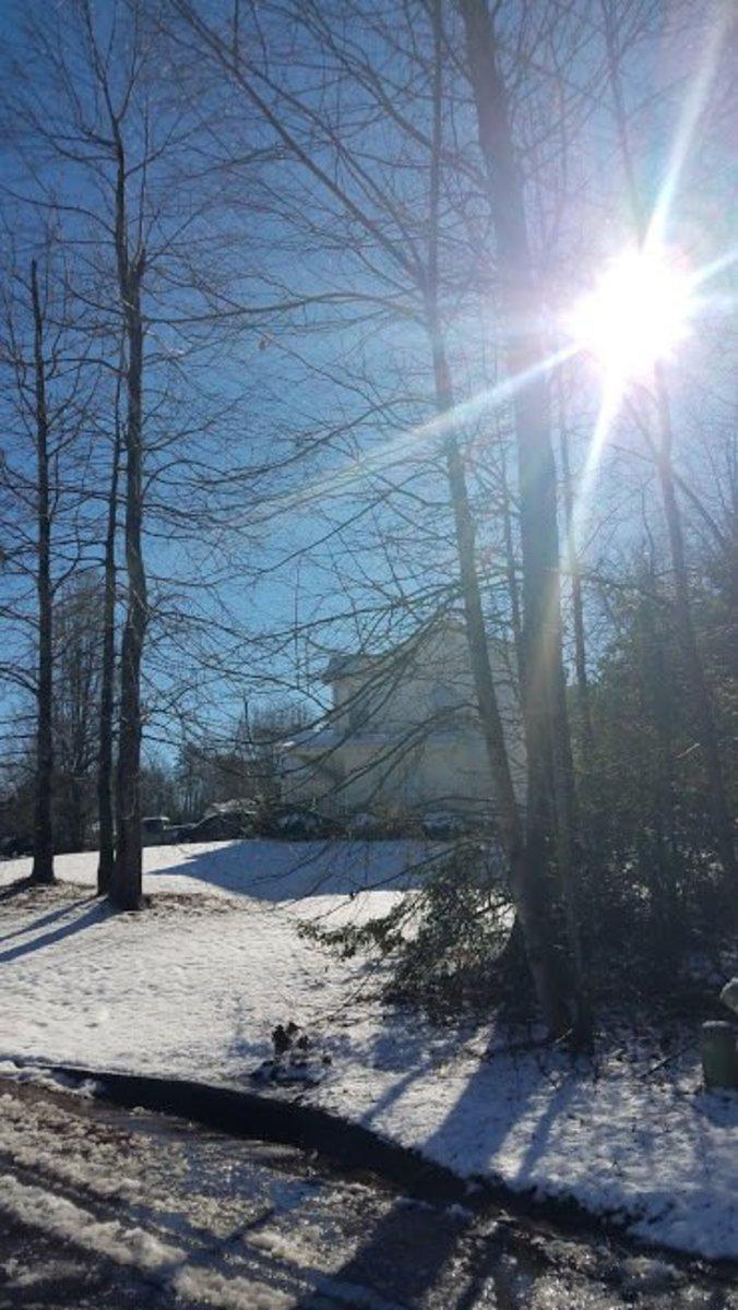 thankfulness-project-snow
