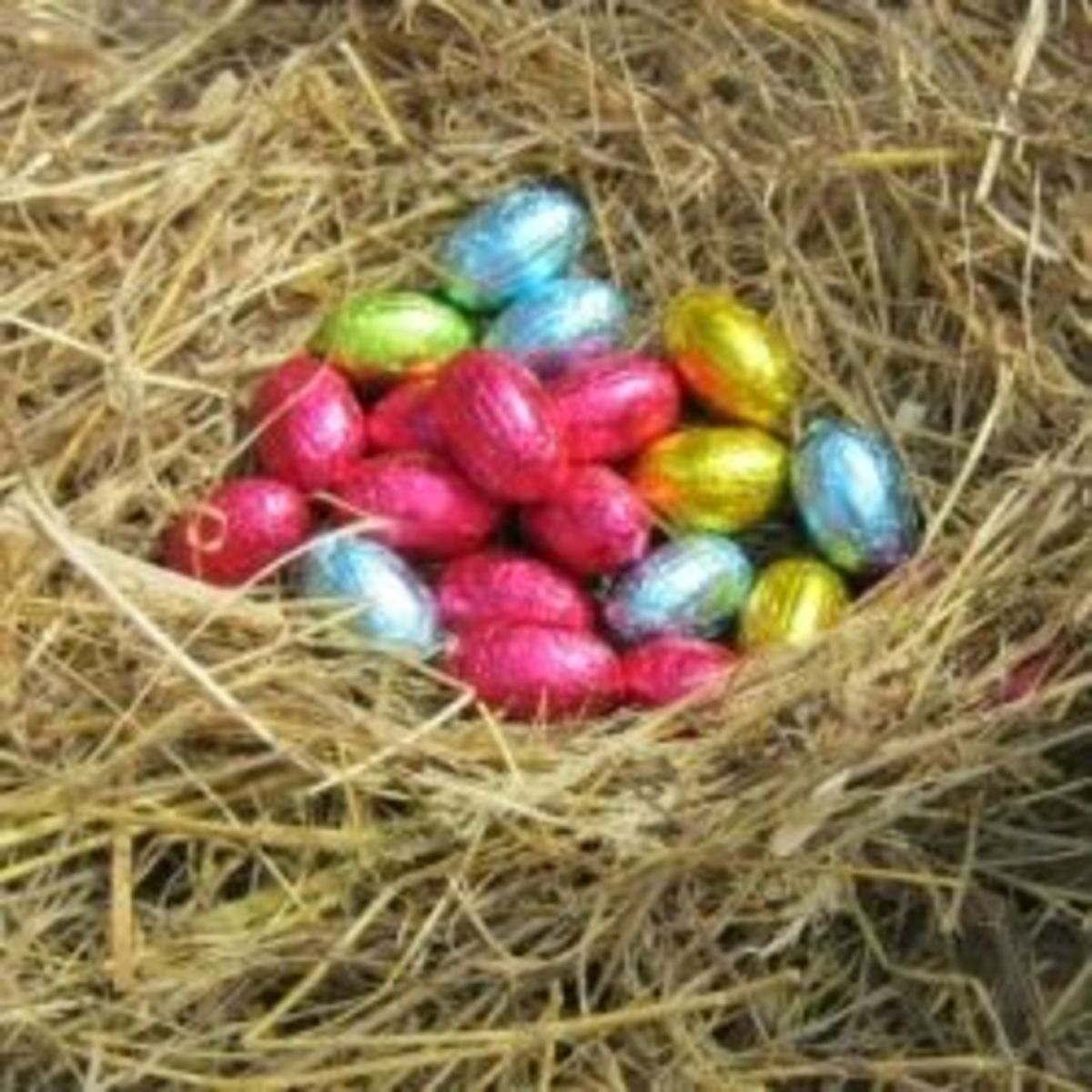 Chocolate Easter eggs in a real bird's nest