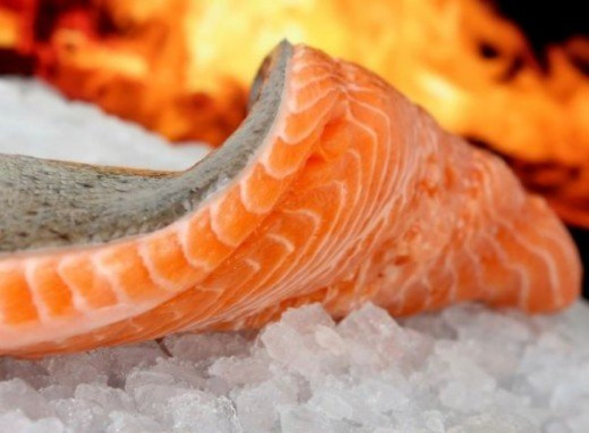 Great Smoked Salmon Recipes