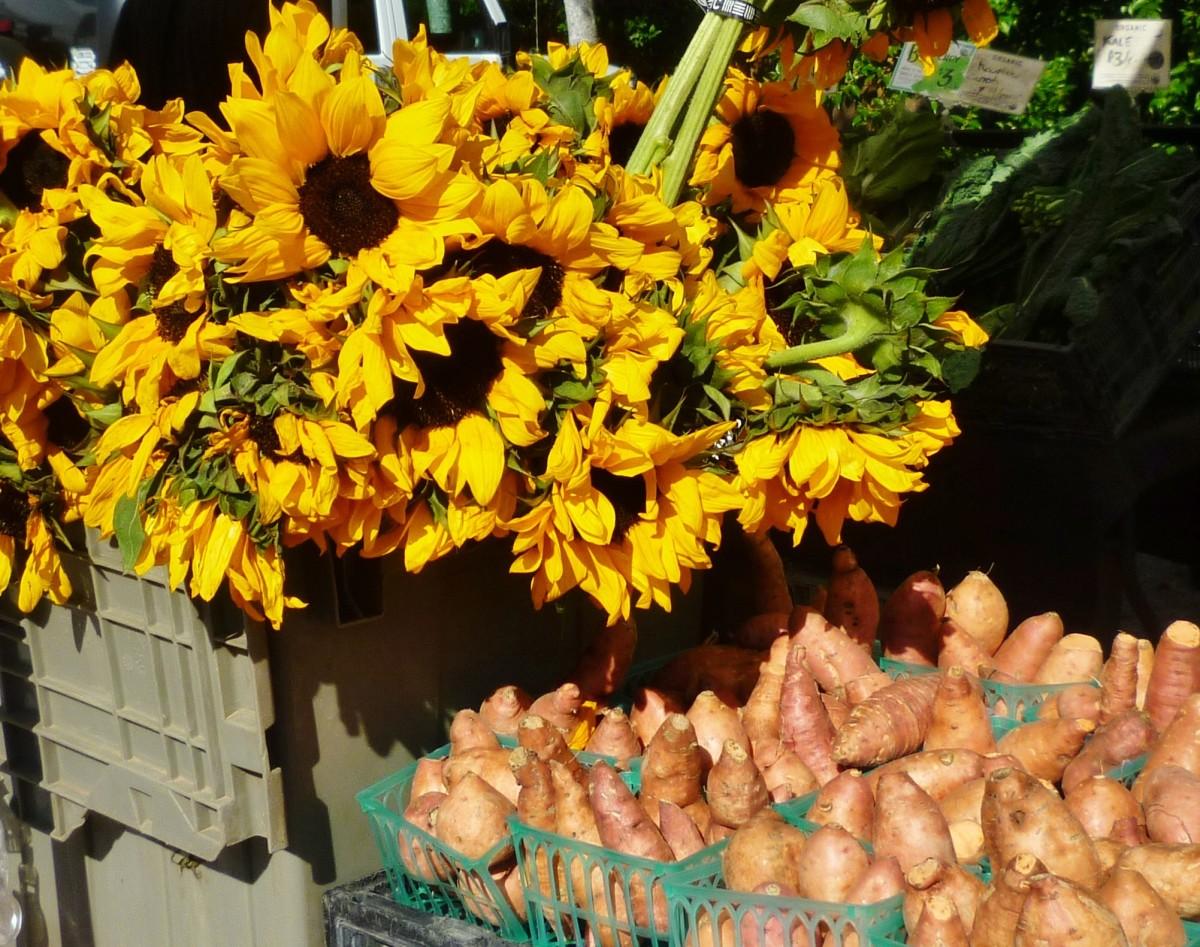 Fabulous Memorial Villages Farmers Market Houston